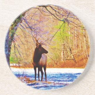 Elk in the snow coaster