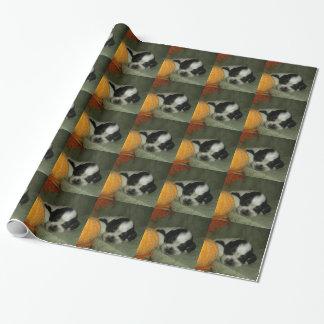 ELVIS , Blue roan &tan american cocker spaniel pup Wrapping Paper