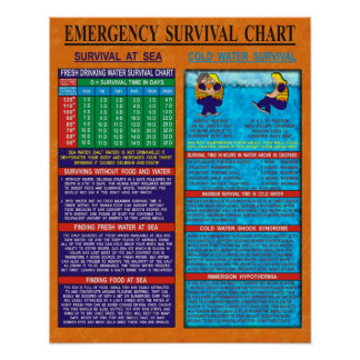 Emergency Survival Chart Posters