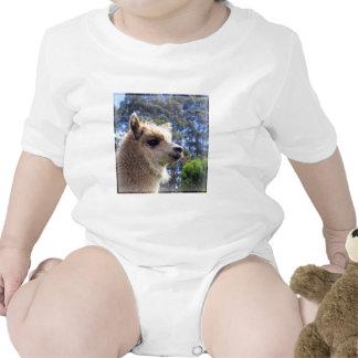 Emily Alpaca T-shirt