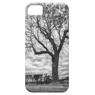 End of Summer iPhone 5 case