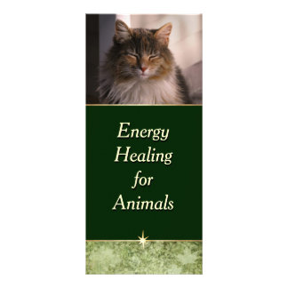Energy Healing for Animals Customized Rack Card