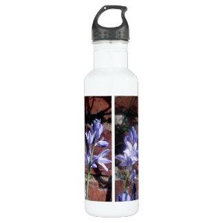 English bluebells 710 ml water bottle