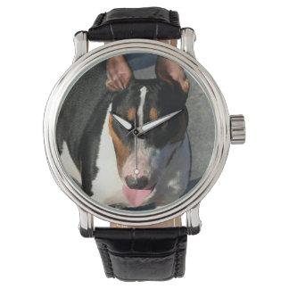 English bull terrier dog watch