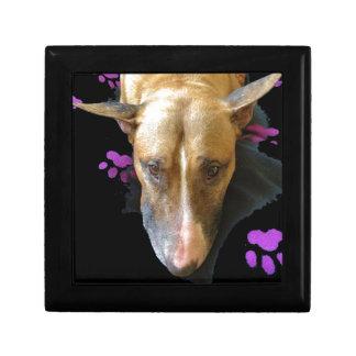 English Bull Terrier Gift Jewellery Box