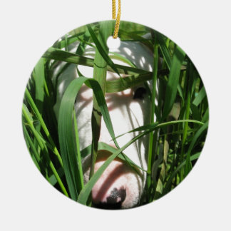English Bull Terrier Hiding in the Grass Christmas Ornament
