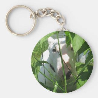 English Bull Terrier Peeking Through the Leaves Key Ring