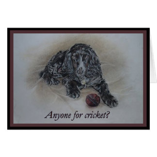 English Cocker Spaniel with cricket ball Card