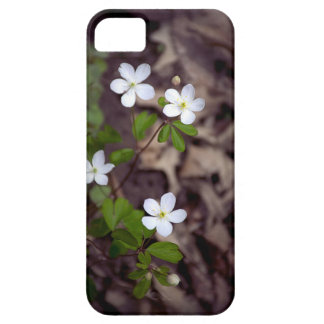 Ephemerals Blooming Case For The iPhone 5