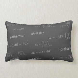 Equations of Thermodynamics Lumbar Cushion