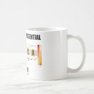 Equilibrium Potential Inside (Active Transport) Mug