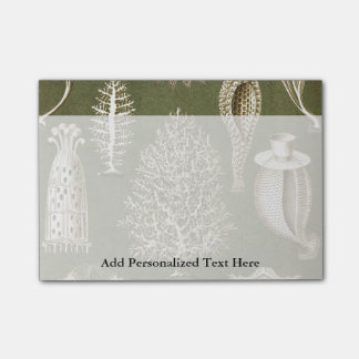 Ernst Haeckel Calcispongiae Post-it® Notes