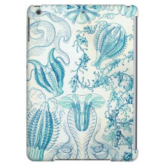 Ernst Haeckel Ctenophorae Jellyfish iPad Air Cover