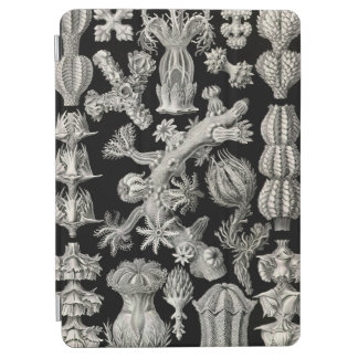 Ernst Haeckel Gorgonia iPad Air Cover