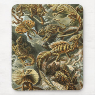 Ernst Haeckel - Lacertilia Mouse Pad