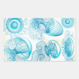 Ernst Haeckel Leptomedusae jellyfish Rectangular Sticker