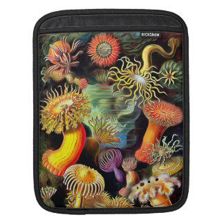 Ernst Haeckel Sea Anemones Vintage Art iPad Sleeve