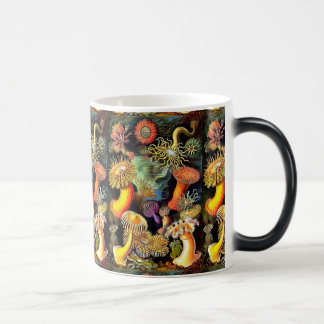 Ernst Haeckel Sea Anemones Vintage Art Magic Mug