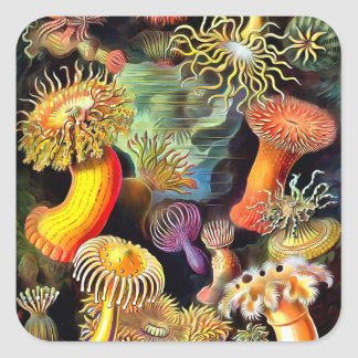 Ernst Haeckel Sea Anemones Vintage Art Square Sticker
