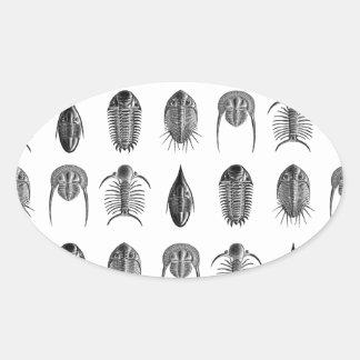 Ernst Haeckel Trilobites & fossils pattern - small Oval Sticker