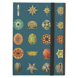 Ernst Haeckel's Undersea Jewels iPad Air Case