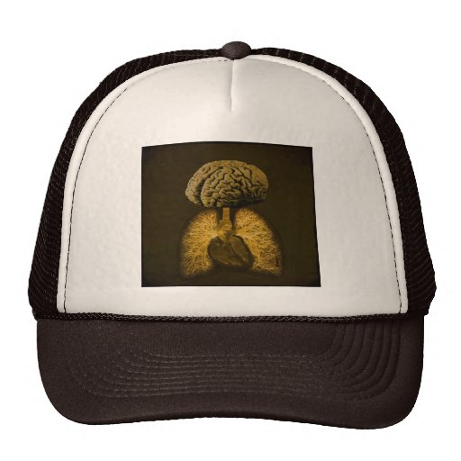 Essential Anatomy Hat