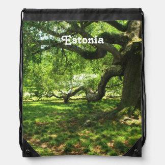 Estonia Landscape Backpacks