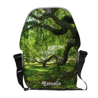 Estonia Landscape Messenger Bag