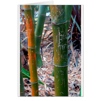 Etched Bamboo Card