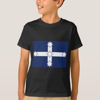 eureka flag T-Shirt