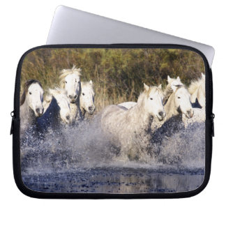 Europe, France, Ile del la Camargue. Camargue 2 Laptop Sleeve