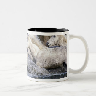 Europe, France, Ile del la Camargue. Camargue 5 Two-Tone Coffee Mug