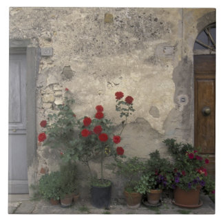 Europe, Italy, Tuscany, Chianti, Tuscan doorway; Tile