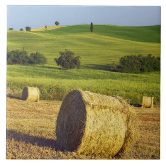 Europe, Italy, Tuscany, Val d'Orcia, Pienza - Tile