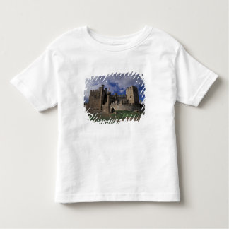 Europe, Spain, Ponferrada, Leon. Templer Toddler T-Shirt