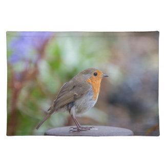 European Robin place mat