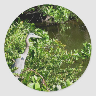 Everglades - Heron in swamp Classic Round Sticker