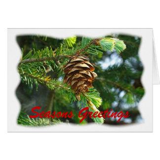 Evergreen Seasons Greetings Greeting Card