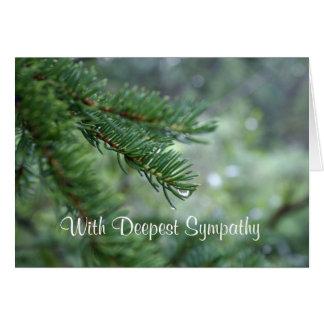Evergreen Sympathy Card
