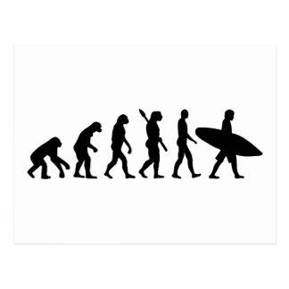 Evolution surfing surf board postcards