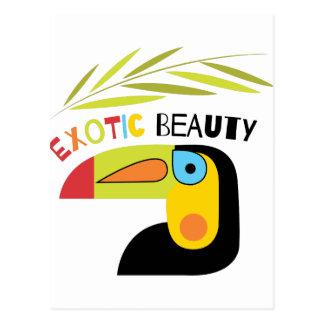 Exotic Beauty Postcard
