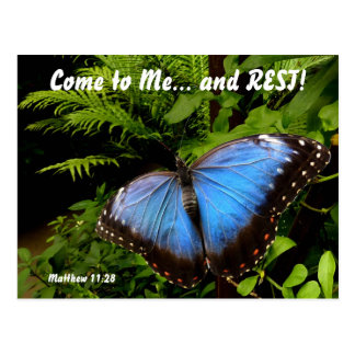Exotic blue butterfly 2 postcard