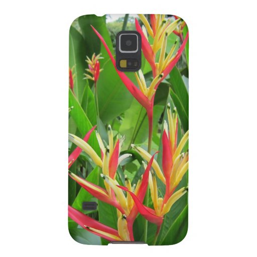 Exotic orange and gold flowers galaxy nexus covers