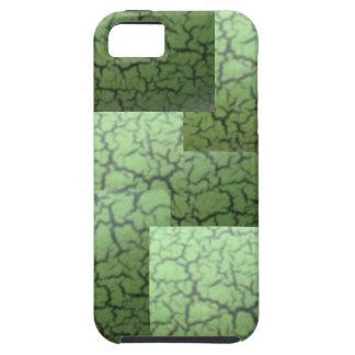 Exotic Paint Technique iPhone case iPhone 5/5S Covers