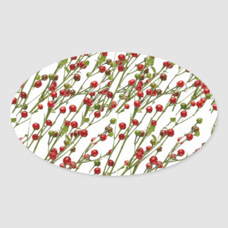 Exotic Red Chillies -  Super Chef Collection Oval Sticker