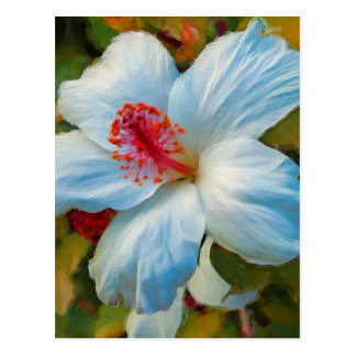 Exotic Tropical Flower Postcard