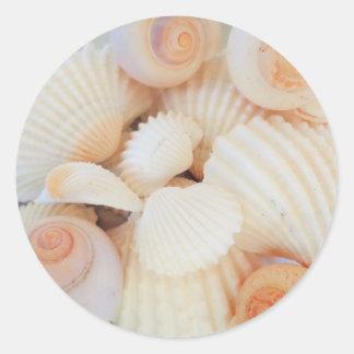 Exotic White Peach Sea Shells, Summer Beach Classic Round Sticker