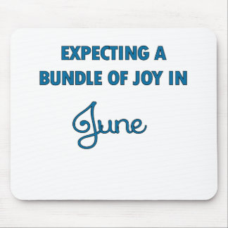 Expecting a bundle of joy in June  blue.png Mouse Pad