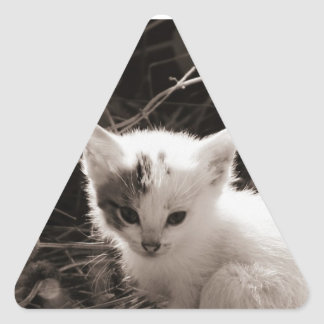 Exploring Kitty Triangle Sticker