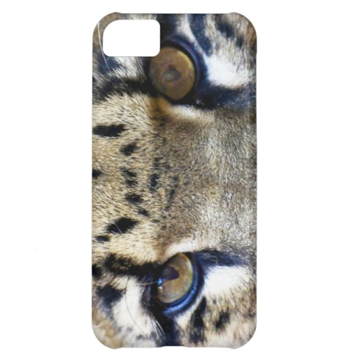 Eyes of a clouded leopard iPhone 5C covers